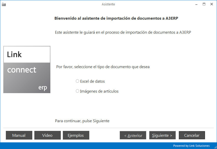 Link Connect ERP: Asistente